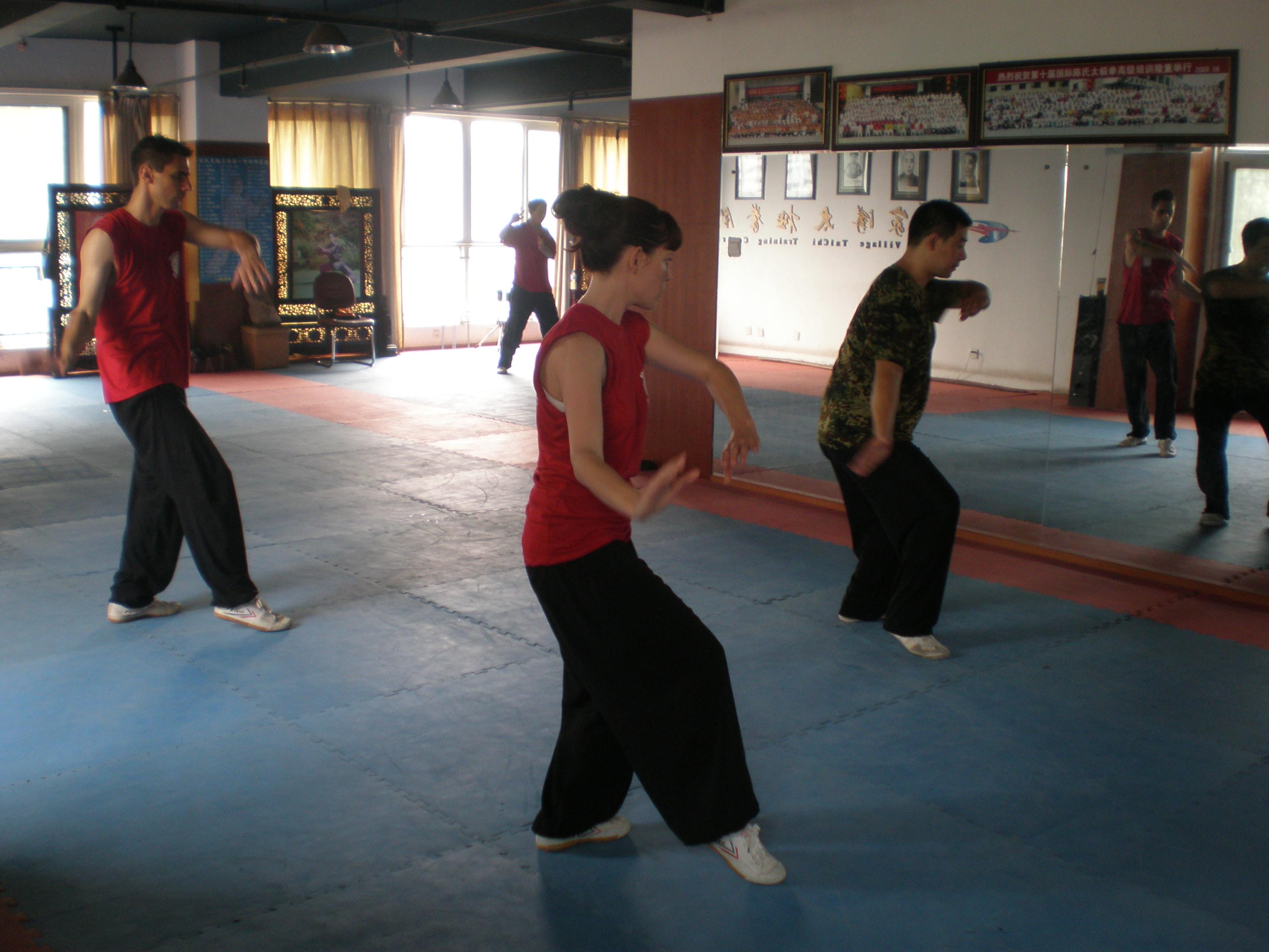 Mixed Martial Arts School