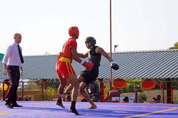 2015 San Shou Championships
