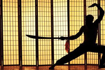 From Blade to Po – which martial art is yours?