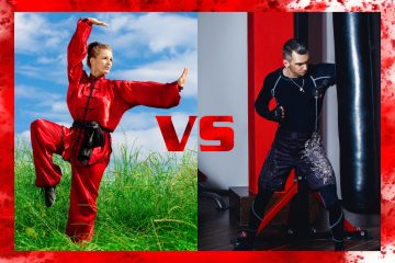 Traditional or mixed martial arts – what's the difference?